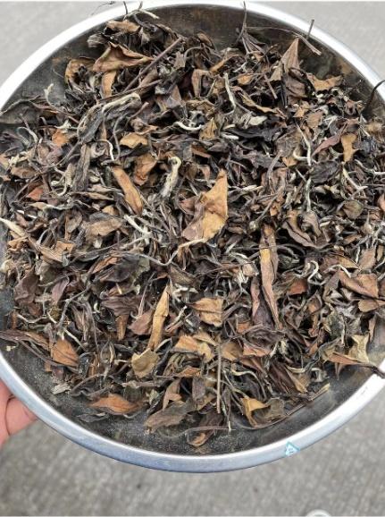 王树章茶业有限公司(图)、老白茶怎么喝才正确方法、资阳老白茶