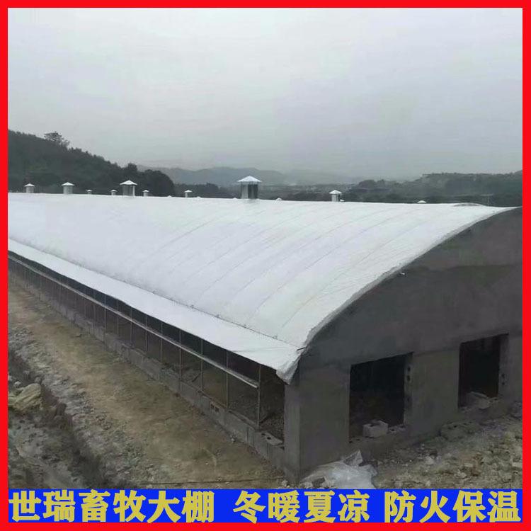 养羊大棚建设、菏泽养羊大棚、世瑞畜牧设备(查看)